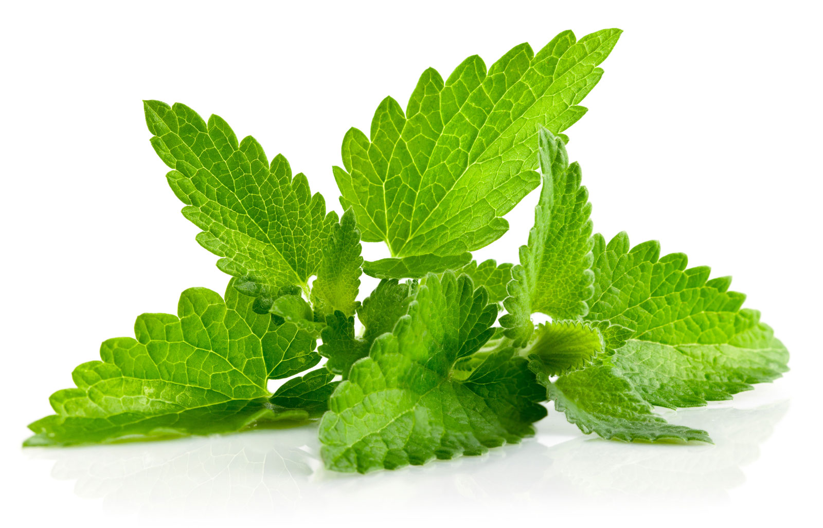 Mint leaves for puffy eyes